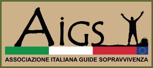 A.I.G.S